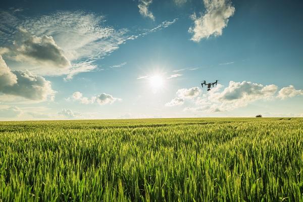 農作物の管理から収穫量アップまで「アメリカのドローン導入実例」