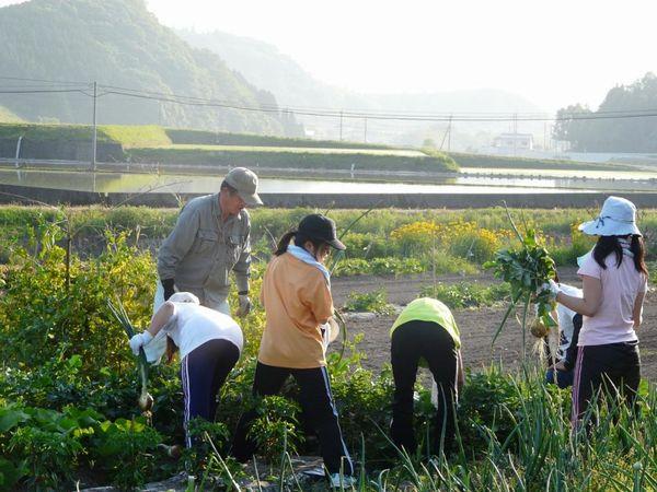年間売上350万円の農家も。大分県安心院町に学ぶ農泊ビジネス