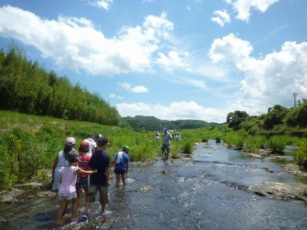 川を歩きながら自然環境について学び、考えるイベント「リバーサイドウォーク」の様子