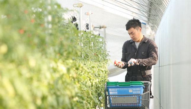 農地も栽培ノウハウも確保!すぐに就農できる画期的な方法とは