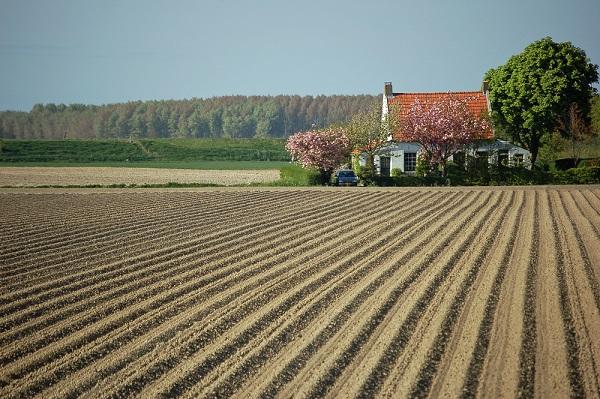 就農時の住居:実家を利用する人が28.1%