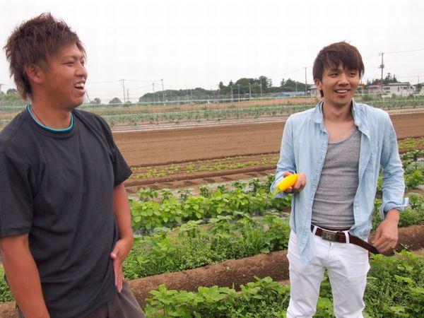地方と都市を野菜でつなぐ。アグリベンチャーの挑戦