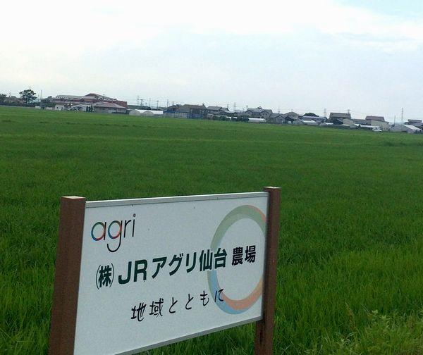 JR東日本×農業:鉄道ネットワークで農業を応援