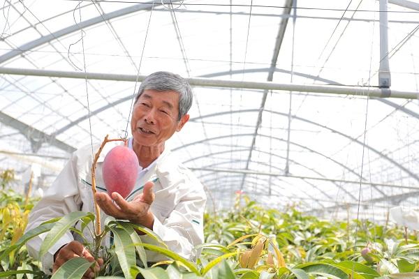 SNSの運用を始めると、農園の売上は右肩上がりに