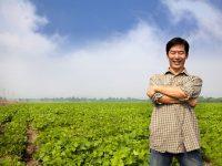 新規就農前に知っておきたい農業の実態【数字で見る日本の農業vol.1】