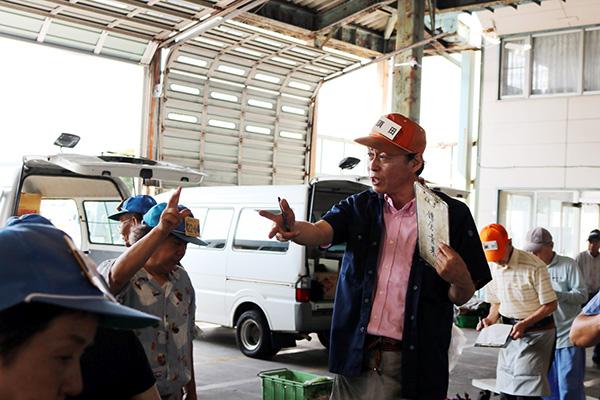 鎌倉青果市場での活気ある競りの現場