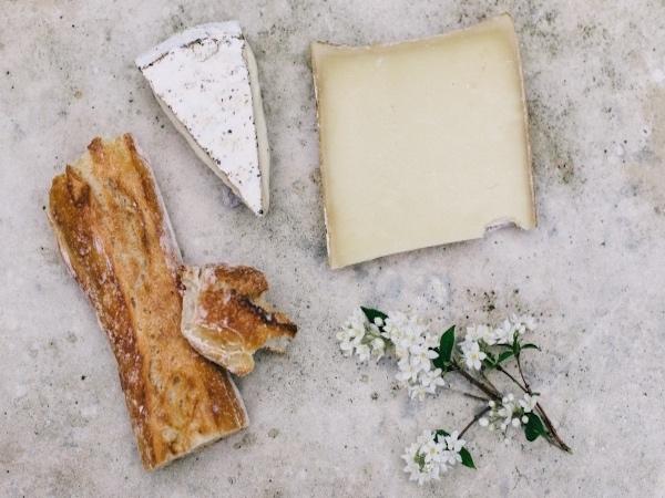 8月の旬チーズ「クロタン・ド・シャヴィニョル」の魅力