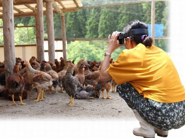 VRで農場体験!「塚田農場」でアルバイト従業員の研修プログラムを開始
