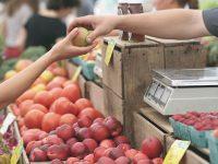 都市型マルシェ 農家が育てた新鮮野菜を買える都内のファーマーズマーケット10選