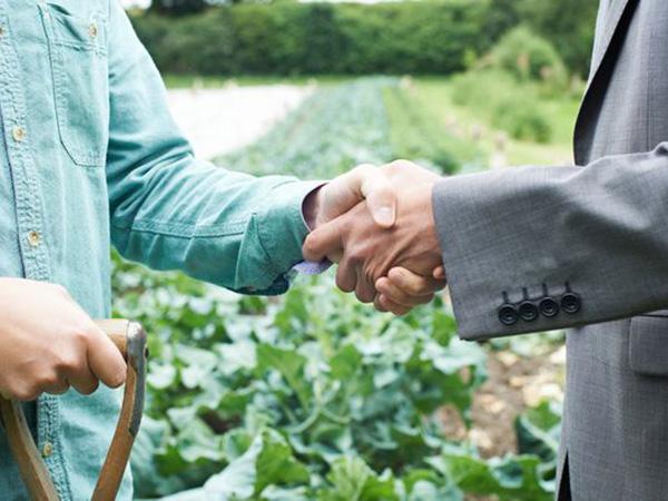 エンタメ・鉄道・旅行業界も注目。農業関連事業に参入した大企業3つの事例