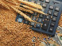 税理士に聞く「新規就農者のお金の心構え」【ファーマーズマネートーク】