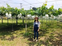 食育イベントや多品目生産によるリスク分散。東京の農家ならではの工夫とは?