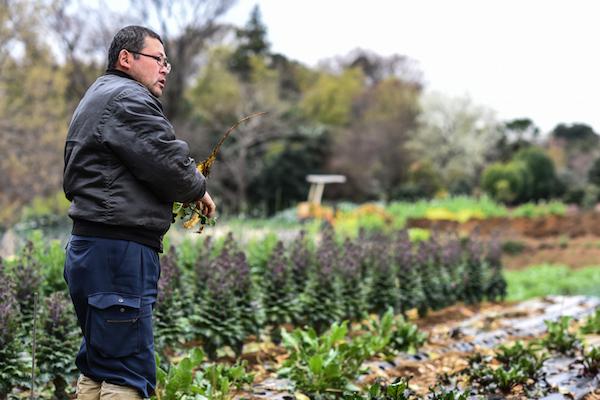 多品目少量生産を可能にした野菜作りへの探求心