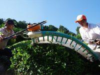 日本有数の急傾斜 無農薬栽培の宇治茶畑へのハイキングツアーを茶農家が開催