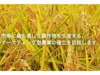"""唐沢農機サービスが""""マーケティング型農業""""の確立に向け「農業事業部・カラサワファーム」を新設。"""