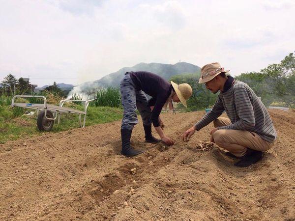 神話の国の伝統野菜を守る。脱サラして出西生姜の栽培を継承