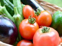 夏野菜をしなびさせない保存方法