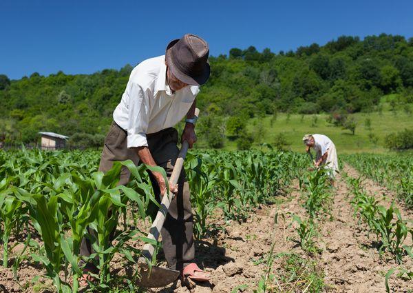 75歳以上の農業従事者の医療費は、非農業従事者の約7割