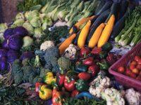 【伝統野菜 鎌倉野菜を知ろう!】鎌倉野菜の特徴とは