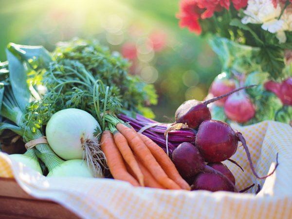「地産全消」で地域のおいしさを全国に「野菜生活100」季節限定シリーズ 秋冬のラインナップ8種類が決定