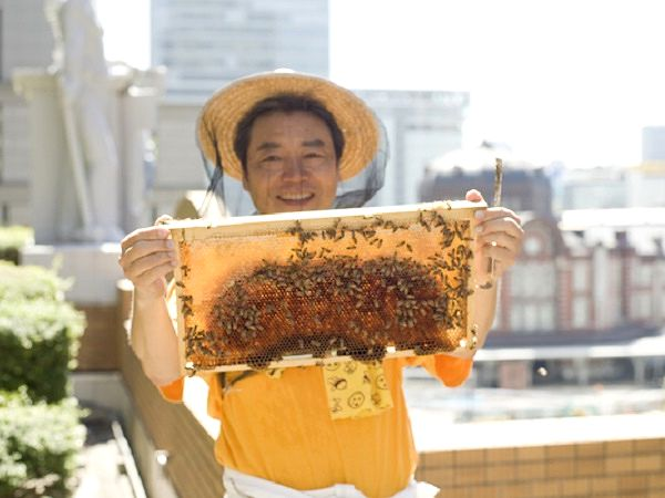 全国の地域おこしに発展 2006年始動「銀座ミツバチプロジェクト」
