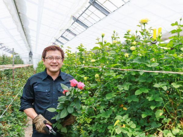 「全国バラ切花品評会」最優秀賞歴代最多ばら園のバラを育てる秘訣
