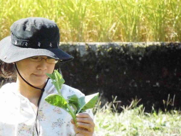 20代で就農 山梨県の女性専業農業家【ファーマーズファイル:羽野幸】
