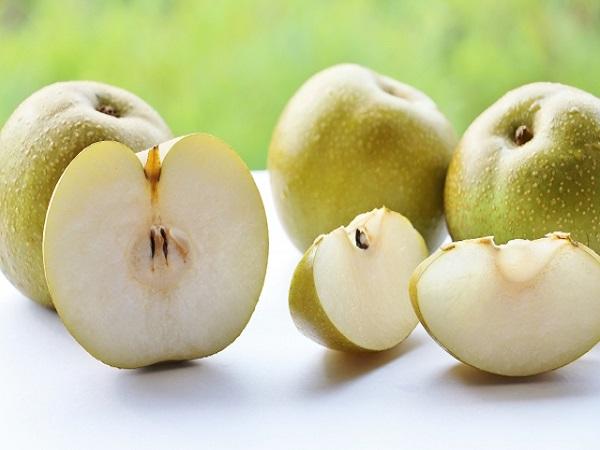 弥生時代からあった?初秋の果物 梨のヒミツ