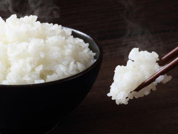 日本人の米離れを食い止める 少量短時間で炊ける「10分ごはん」