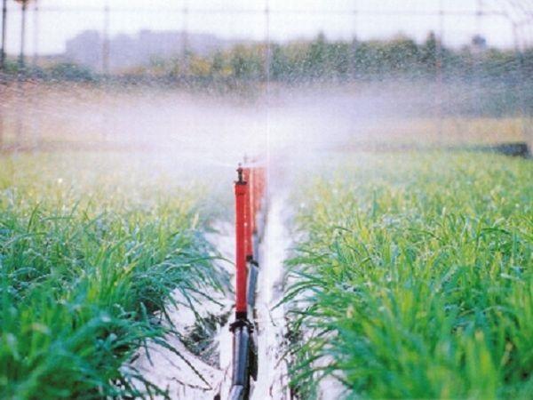 Bluetooth&アプリで自動潅水!小・中規模農家に役立つ農業IT
