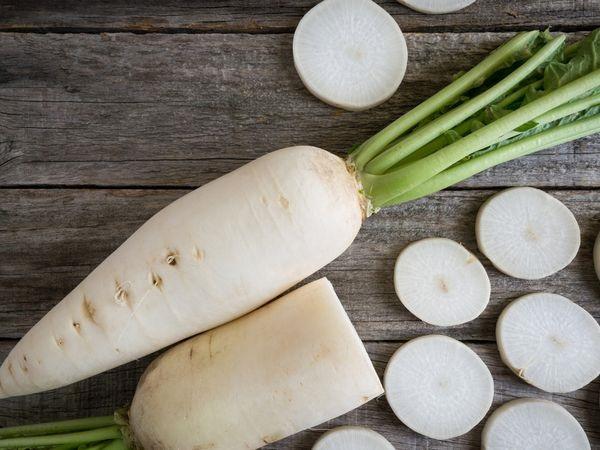 保存法や下ごしらえもチェック!ダイコンの品種10種まとめ【野菜ガイド】