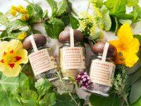 自然栽培でハーブを育てる 香りのある草で生活に彩りを