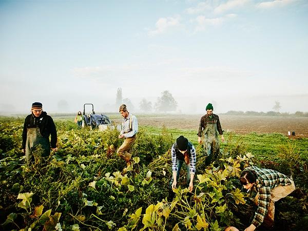次世代農業を応援! フリーマガジン『AGRI JOURNAL』最新号発行【PR】