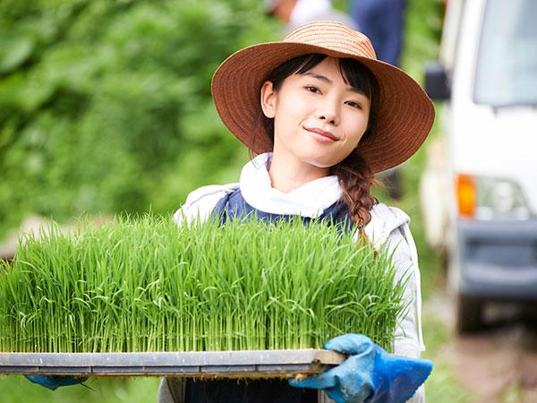 農業したい人必見!まずは農業の仕事内容を知ろう【就農ことはじめVol.1】