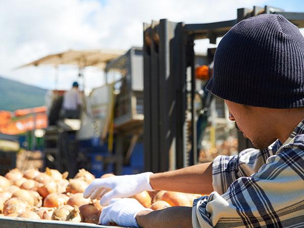 就農ことはじめVol.2 農業を始めるなら独立起業、それとも就職? 選べる二つの方法