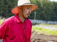 受け継いできた固定種にこだわる!青森県ニンニク農家の挑戦