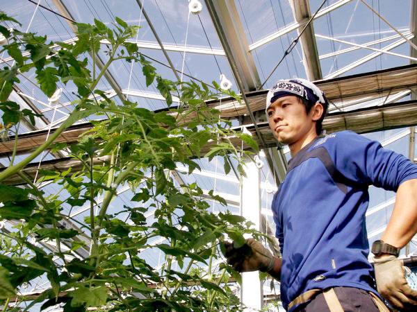 就農3年目で温室栽培農家の経営者に 【ファーマーズファイル:山本泰隆】