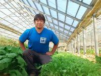 いずみ野の野菜を守る!20代農業家【ファーマーズファイル:横山勝太】