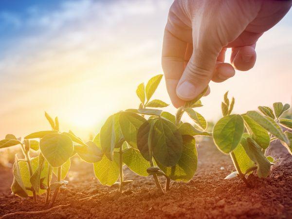 農業への理解を深める「日本農業検定」の概要と試験方法