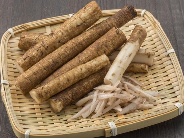 食用は日本だけ!? ゴボウの正しい保存法と栄養【野菜ガイド】