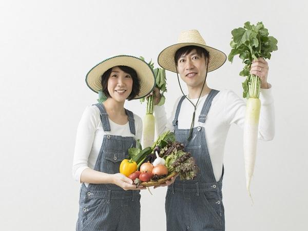農業法人を設立する方法【就農ことはじめVol.5】