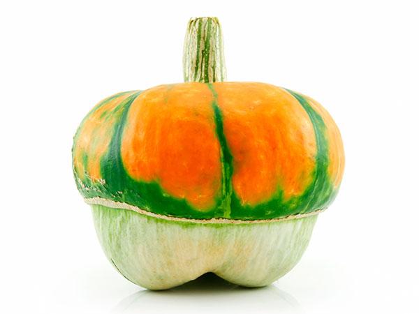 トマトとジャガイモが一つの株に!ハイブリッド野菜が続々と