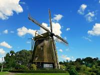 認知症をケアする農業 農福連携先進国オランダのケアファームに注目