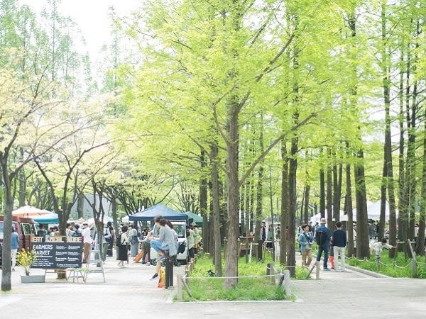 第2回 神戸ファーマーズマーケット運営者インタビュー ~ノウハウ編~
