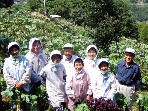 契約農家ゼロから70軒へ 農山村の暮らしを守る「ひまわり乳業の青汁」