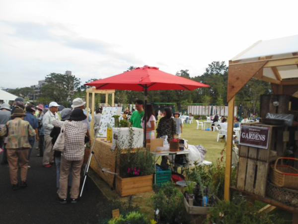 新規農業法人の個性的モデル 江戸東京野菜の小城プロデュース