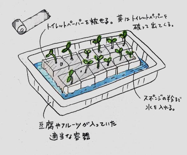 水耕栽培方法