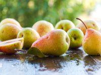 ラ・フランスのおいしい食べ方 西洋梨の保存法と栄養【果物ガイド】