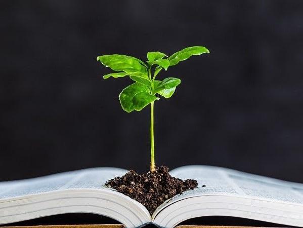 AGRI+CULTURE 農業と文学を愛した農業文豪3選!
