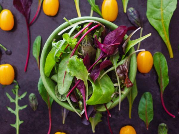 西洋野菜をおいしく食べる ベビーリーフ・ルッコラ・セルバチカ・アイスプラント【野菜と果物ガイド】